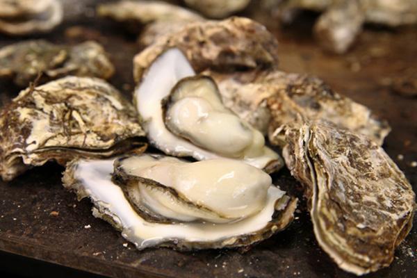 หอยนางรมอาหารทะเลที่หลายท่านนิยมทาน