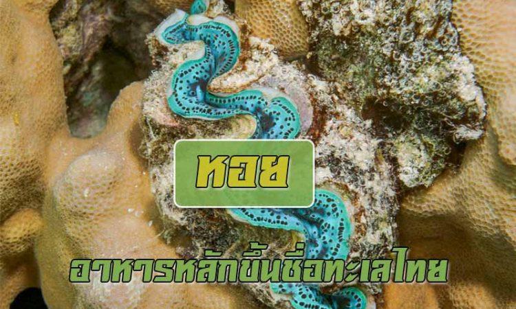 หอยใกล้สูญพันธุ์อยู่ในการคุ้มครองมีชนิดไหนบ้าง